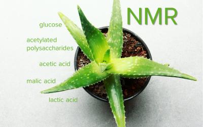 Aloe vera – Several compounds in one measurement!
